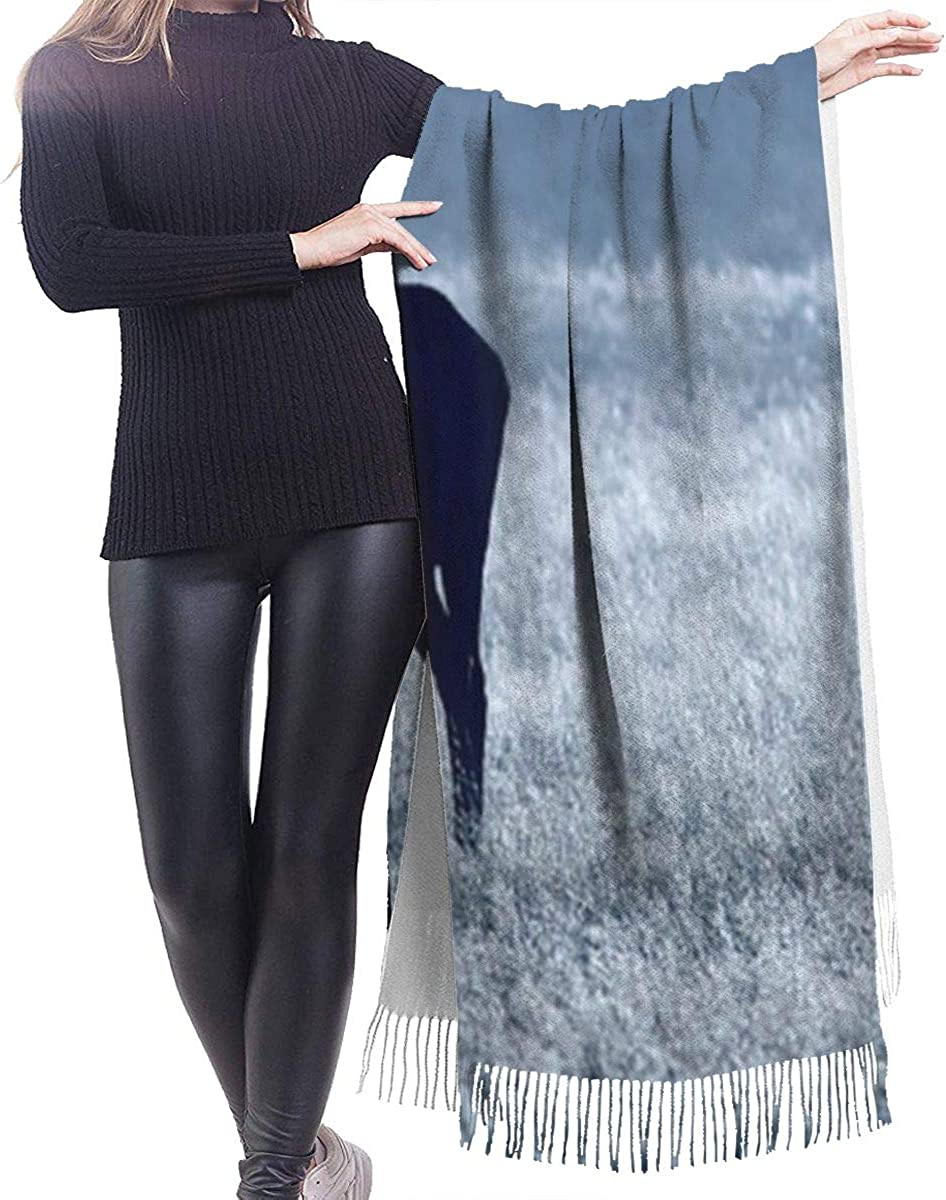 Blue Deer Cashmere Shawl Wrap Scarf Large Warm Scarf For Women