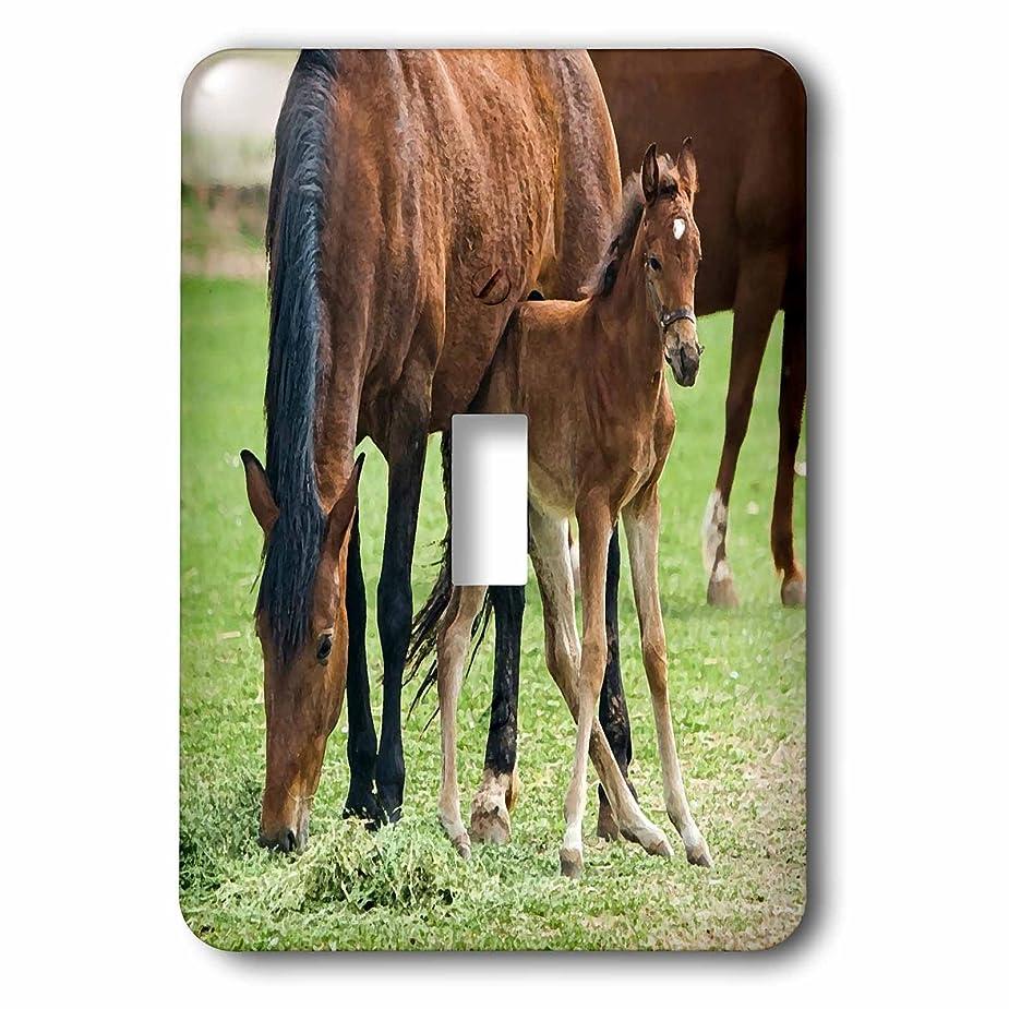 コンバーチブルシネマ誤解を招く3drose LSP _ 203735?_ 1印刷のMare and Foal Painting Single切り替えスイッチ