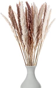 Decor Dance Natural Dried Pampas Grass, 30 Pcs (17 inch Stems) Boho Floral Decorative Flower Arrangement Home Decor for Living Room Kitchen or Office, Long, Soft and Fluffy Stalks, Brown and White