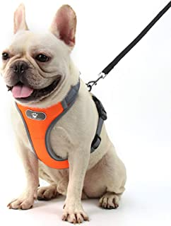 Dog Harness for Medium Dogs No Pull, Adjustable Pet Traction Harness, with Padded Vest, Easy to Control, No More Pulling, ...