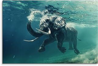90x60cm Poster Tierfotografie Durchsichtige Qualle im Meer