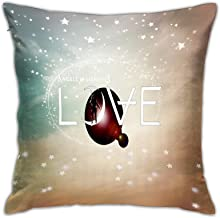 Badinton 3D Print Throw Pillow Covers,Angels Airwaves Aa,Decorative Square Cushion Covers Case for Sofa Couch Home Decor 1...