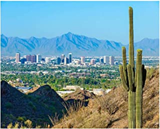 Paint By Numbers phoenix skyline framed by saguaro cactus and mountainous desert Digital Coloring Oil Painting Canvas With...