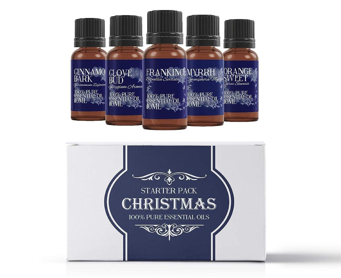 ペリスコープ羽インフレーションMystic Moments | Essential Oil Starter Pack - Christmas Oils - 5 x 10ml - 100% Pure