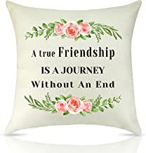 Friendship Gift Inspirational Best Friend Decorative Throw Pillow Cover Motivational Quote Decorative Cushion Cover Encour...