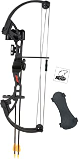 Bear Archery Brave Bow Set
