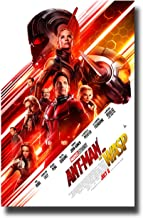 Ant Man and The Wasp Movie Art Silk Canvas Poster 12x18 24x36 inch
