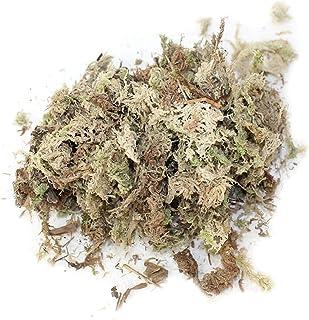 12L Sphagnum Moss Garden Supplies Sphagnum Moss hidratante Nutrition orgánico fertilizante para Phalaenopsis Orchid Musgo Sphagnum