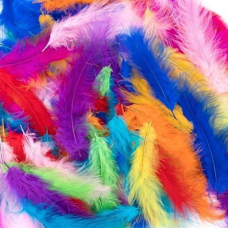 Plumes colorées,300 pièces Plume pour l'artisanat Plumes frappantes Plumes artisanales naturelles Plumes d'oie/dinde pour bricolage Dream Catchers Mariage Fête d'anniversaire Décorations (10 Colors)