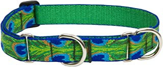 Lupine 1 Inch Tail Feathers Martingale Combo Collar