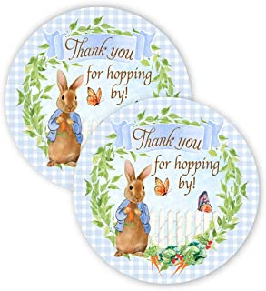 POP parties Peter Rabbit Party Favor Stickers - 40 Favor Bag Stickers - Peter Rabbit Party Thank You Tag - Peter Rabbit Party Supplies - Peter Rabbit Party Decorations - Stickers B
