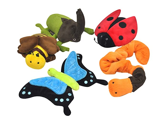Piece in Box Set (Varied) Dog Toys