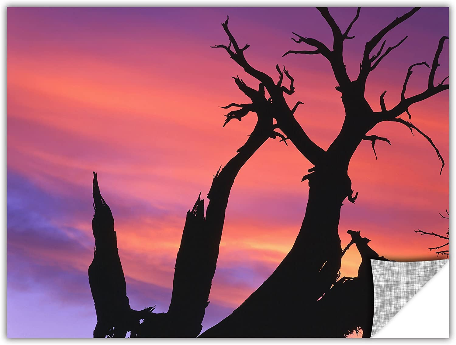 ArtWall Appealz Dean Uhlinger Desert Magic Hour Removable Graphic Wall Art, 14 by 18-Inch