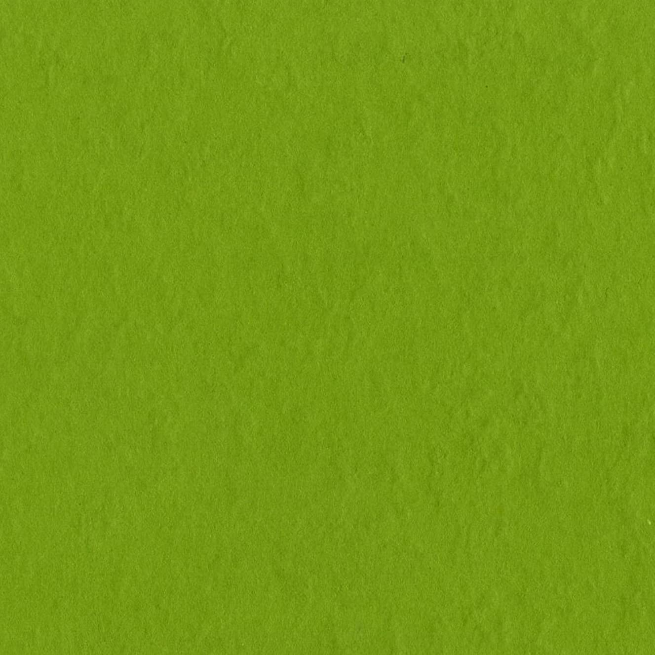 Bazzill Basics Paper T19-5381 Prismatic Cardstock, 25 Sheets, 12 by 12-Inch, Intense Kiwi