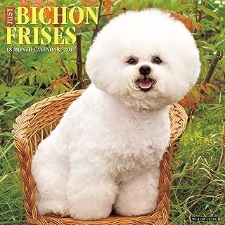 Best bichon frise calendar 2017 Reviews