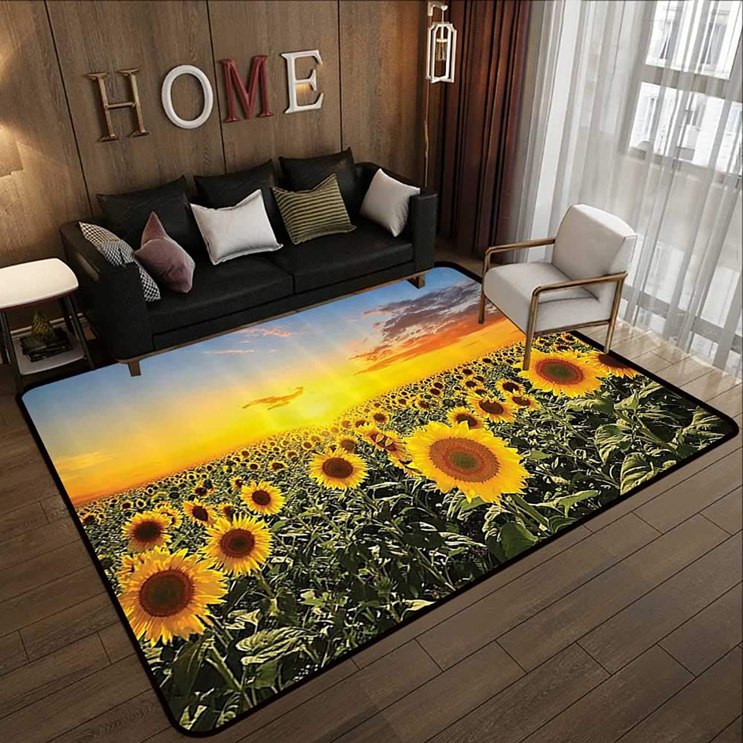 Kids Rugs,Country Farm Garden Decorations,Sunset Over colorful Sunflower Plants Field at Cloudy Evening,bluee Brown Yellow Green 47 x 71  Slip-Resistant Washable Entrance Doormat