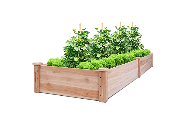 Best Gardening Boxes For Vegetables Amazoncom