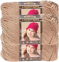 Lion Brand Yarn (3 Pack) Landscapes Yarn Acrylic 100 Percent Medium #4 Soft Yarn for Knitting Crocheting
