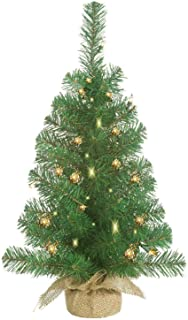Best white led pre lit outdoor christmas tree Reviews