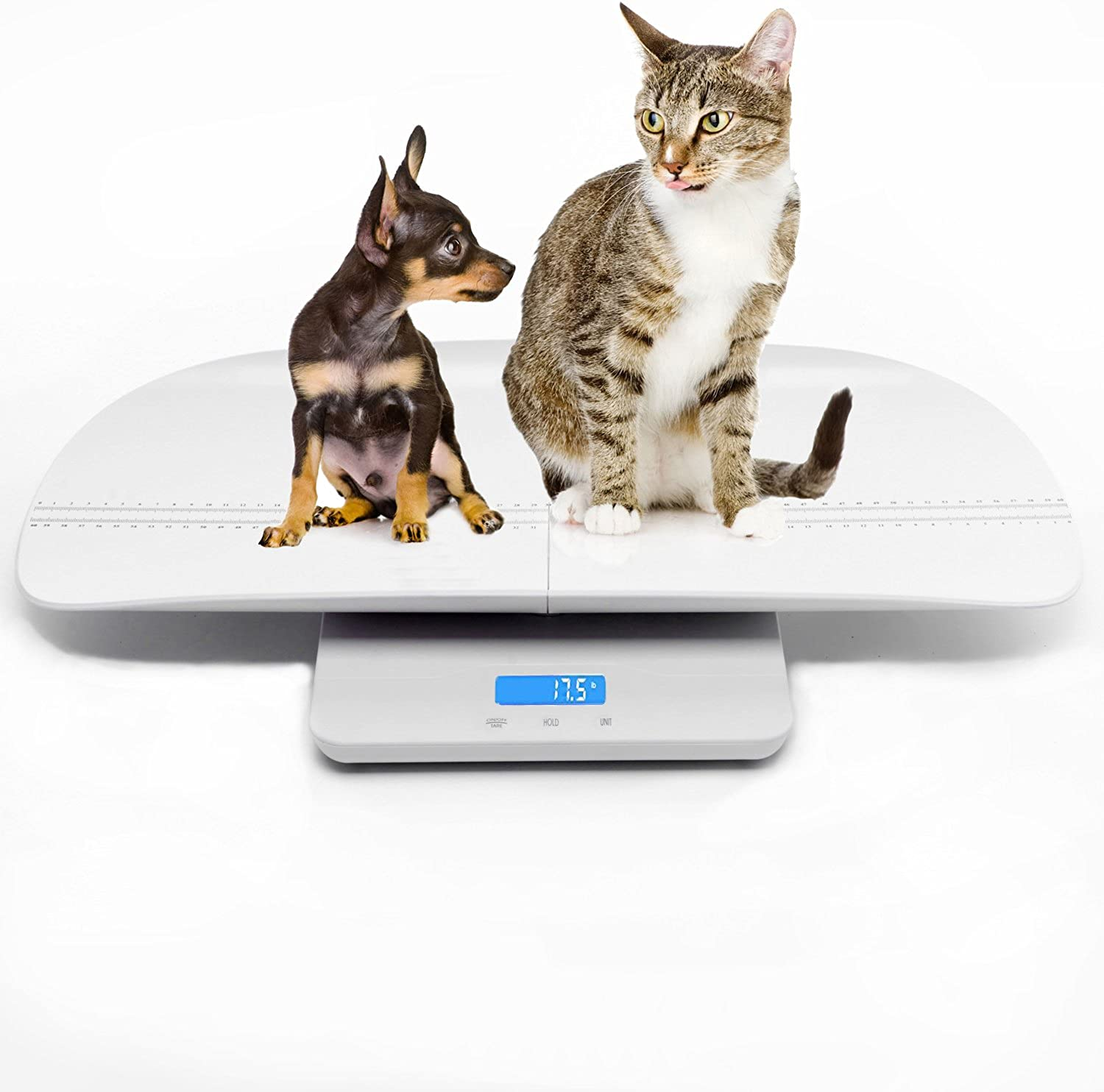 Pet scale to measure Cat   Dog weight accuracy, Capacity 100Kg with 10g accuracy, the pallet height of 60 cm