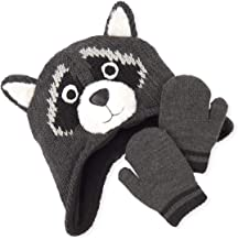 The Children's Place Baby Boys Graphic Raccoon Hat and Mitten Set