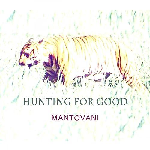 Mr. Wonderful (From The Show) de Mantovani en Amazon Music ...