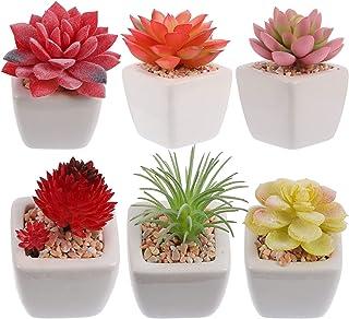 IMIKEYA 6pcs Artificial Succulent Plants Fake Cactus Realistic Succulent Arrangements Bonsai Plant for Home Office Indoor ...