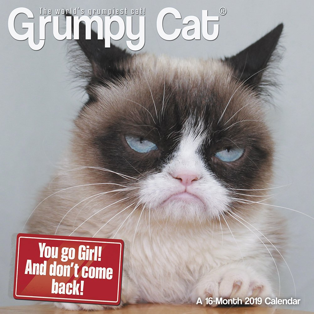 Grumpy Cat 2019 Mini Calendario de pared, divertido gatos por ACCO Brands: Amazon.es: Oficina y papelería