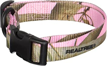 Best pac dog collars Reviews