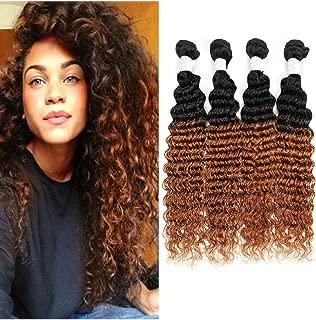 Fengde Hair 7A Ombre Brazilian Deep Wave Virgin Hair 4 Bundles 100% Unprocessed Human Hair Extensions(20202020,1B/30)