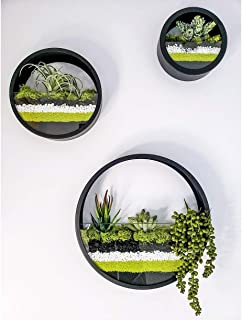 Round Hanging Wall Vase Succulent Planter Vase- Metal Flower Pots, Indoor Decorative Air Plants Container Faux Plants, Cacti and More, Dark Black Color - in Gift Box Set of 3
