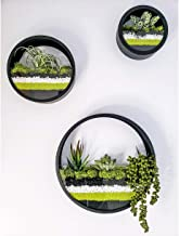 Set of 3 Round Hanging Wall Vase Succulent Planter Vase- Metal Flower Pots, Indoor Decorative Air Plants Container Faux Plants, Cacti and More, Dark Black Color