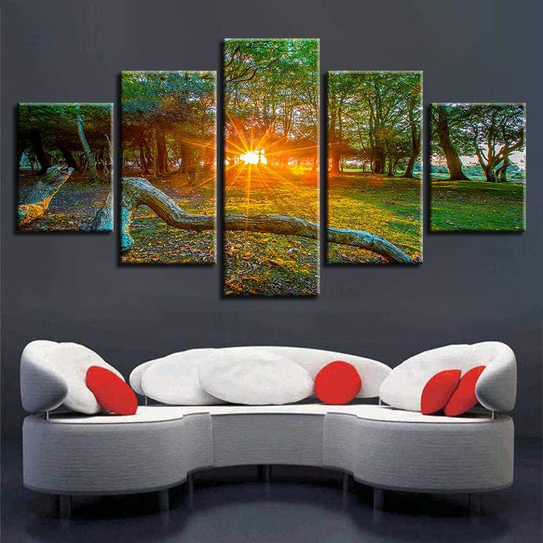 todos los bienes son especiales QIFUHUA Impresión en HD HD HD Obras de Arte Decoración de Pintura 5 Piezas Parque Woods Amanecer Sol Paisaje Arte Pósteres Imágenes modulares Lienzo Moderno, Marco, 20x35 20x45 20x55cm  minoristas en línea