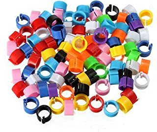 100 Clip On Leg Rings 8mm Clip Band for Chicks, Chickens, Pigeons, Poultry, Tiny Bantams (Mixed Colors) by awtang