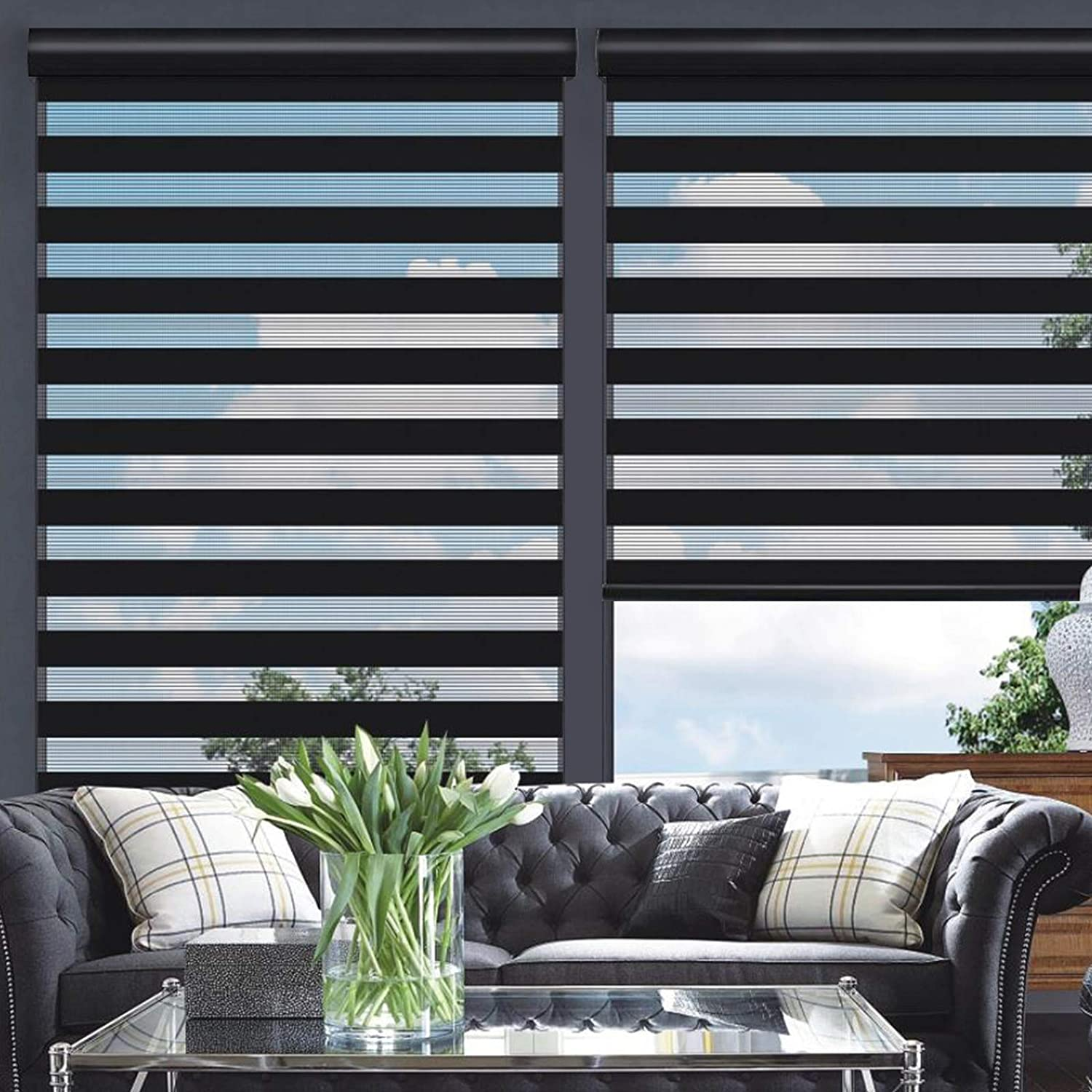 Changshade Cordless Zebra Roller Shade with Valance, Double Layered Window Blind for Day and Night, Light Filtering Window Treatment with Mesh and Opaque Fabric, 24 inches Wide, Black RBS24BK72A