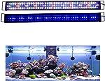 KZKR Aquarium LED Light