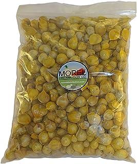 Buy Japanese Garlic (Ajo Japones) 2Lbs! and get FREE 1 oz Chia Bag!