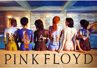 Old Glory LPGI Pink Floyd Back Catalogue Fabric Poster, 30 by 40-Inch