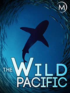 The Wild Pacific