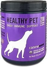 healthy pets inc