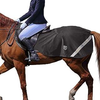 Harrison Howard Horse träningspass ark hästartiklar