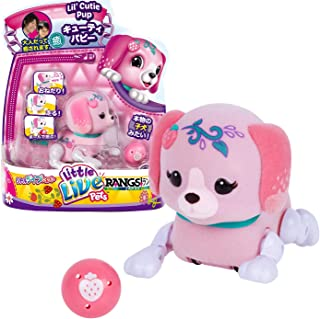 Little Live Pets S1 Cutie Pup Single Pack - Pawberry
