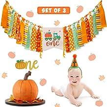 Vansolinne Pumpkin Birthday Highchair Banner Fall Harvest 1st Birthday Party Decorations One Cake Topper Cone Hat Pumpkin ...