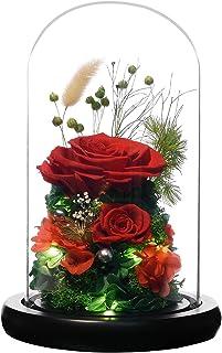 RicoRichプリザーブドフラワー枯れない花観葉植物LEDライトフラワーギフト誕生日女友達 母の日感謝お年寄りへの敬意記念日プレゼント 彼女ドライフラワーガラスポットり (バラ レッド )