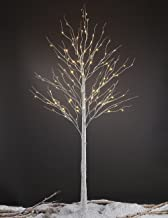LIGHTSHARE 8FT 132 LED Birch Tree,Home,Festival,Party,Christmas,Indoor and Outdoor Use,Warm White