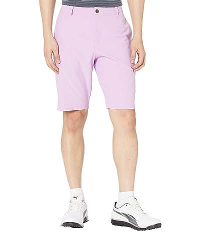 PUMA Golf Jackpot Shorts (Lupine) Men