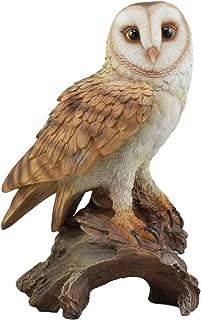 Ebros Realistic Nature Wildlife Common Barn Owl Perching On Tree Stump Statue 13.75