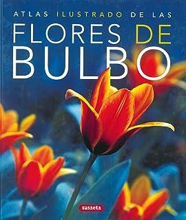 Flores De Bulbo,Atlas Ilustrado