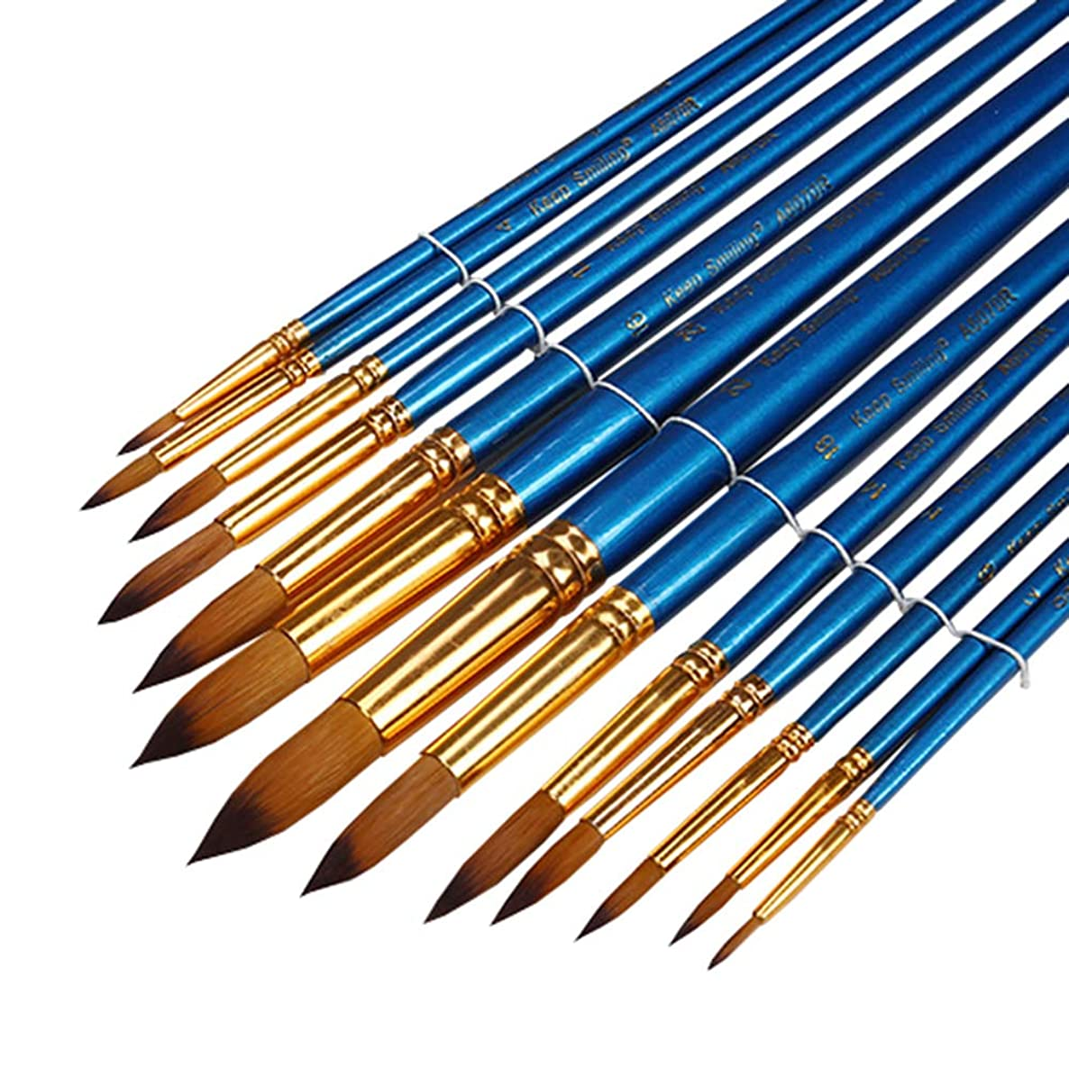 13Pieces Round Pointed Tip Brushes Art Paint Brush Set with Big and Long Handle for Acrylic Watercolor Oil Painting