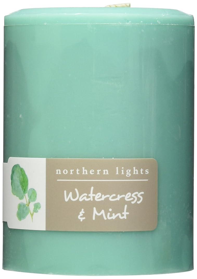 Northern Lights Candles Watercress &ミントFragranceパレットPillar Candle、3?x 4?
